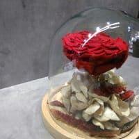 A FOREVER ROSE in a dome glass  / Ενα ΔΙΑΤΗΤΗΜΕΝΟ ΤΡΙΑΝΤΑΦΥΛΛΟ μεσα σε θολο